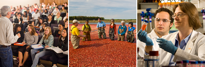 students in the class room and a cranberry bog